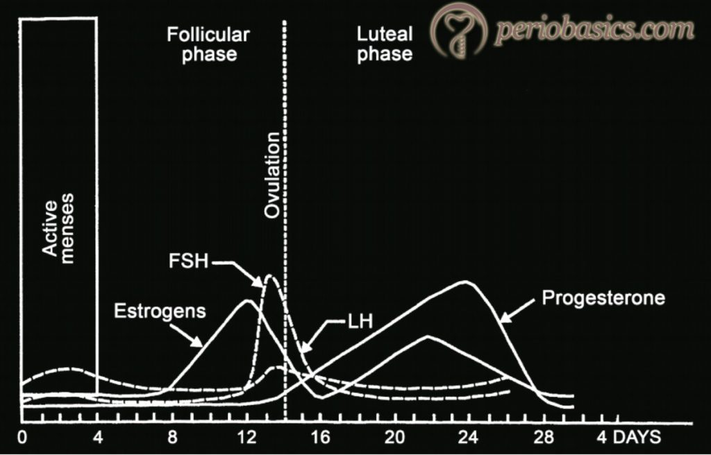 Graph showing the progression of the menstrual cycle and different hormones contributing to it.