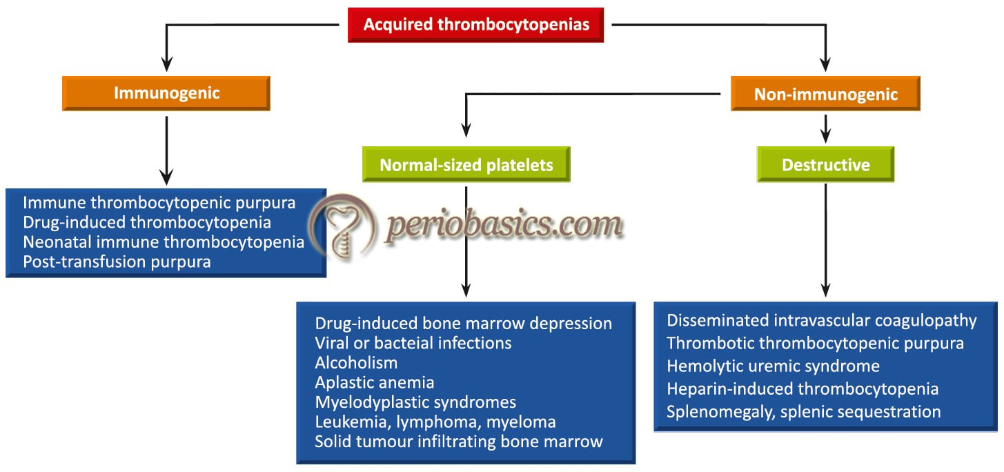 Various causes of acquired thrombocytopenia