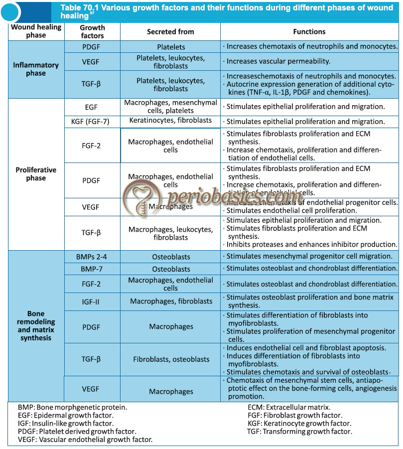 Various growth factors and their functions during wound healing