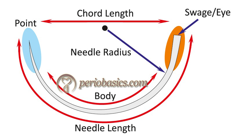 Various parts of a needle