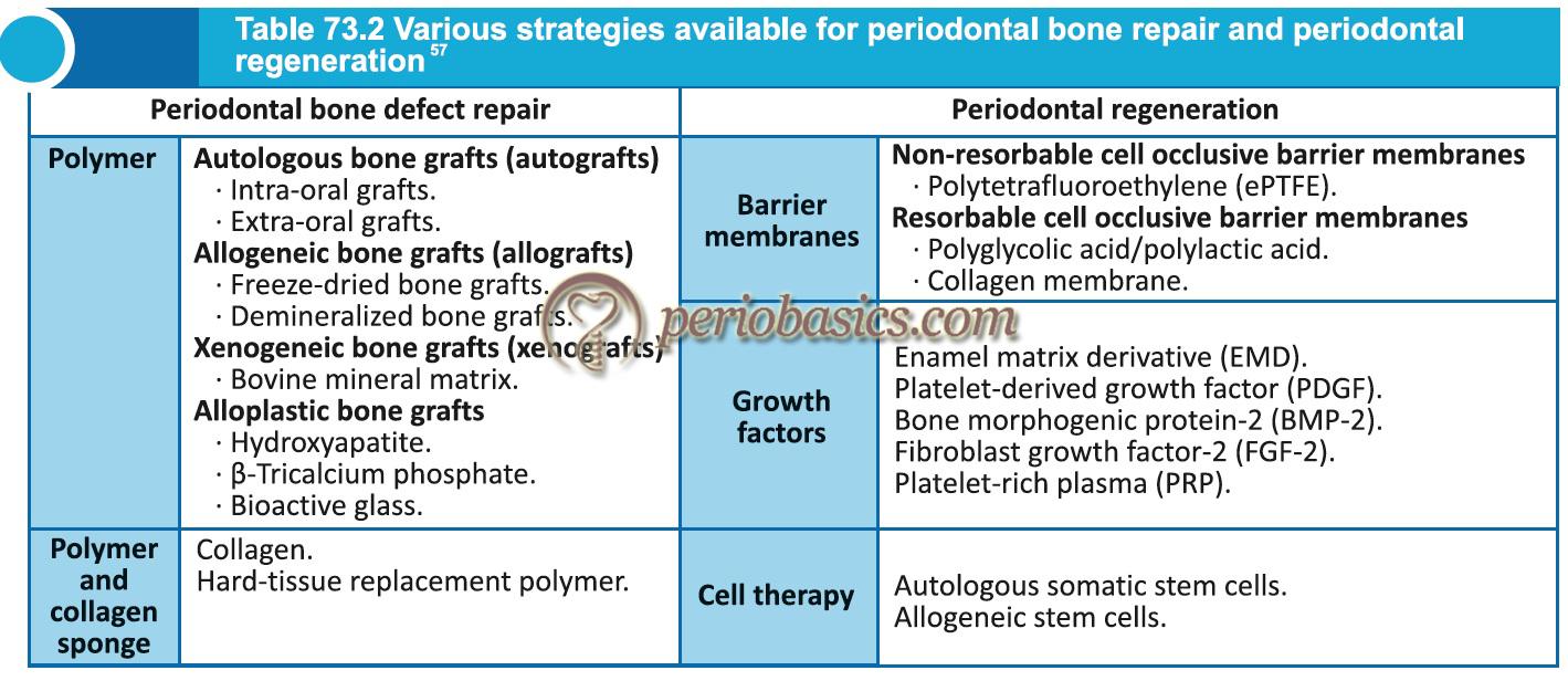 Various strategies available for periodontal bone repair and periodontal regeneration